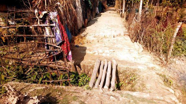 ঝালকাঠির রাজাপুরের গুচ্ছগ্রামবাসীর দুঃখ: ভাঙা ব্রিজ-ইটের সড়ক