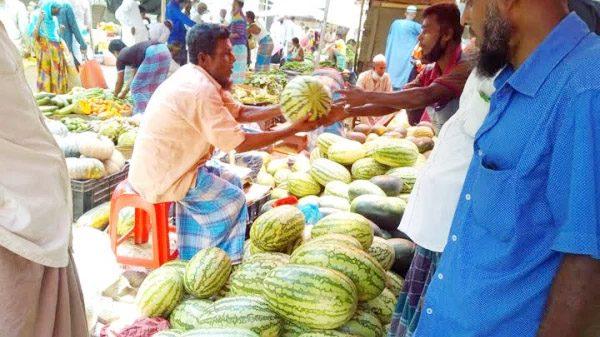 ঝালকাঠিতে বিভিন্ন হাট-বাজারে বাঙ্গি-তরমুজে বাজার সয়লাব