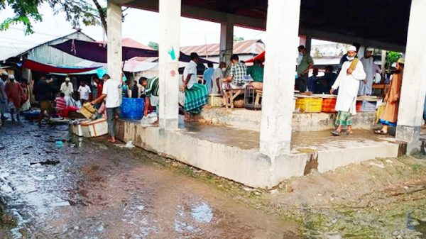 নেই উন্নয়নের ছোঁয়া কাউখালী হাট-বাজারে